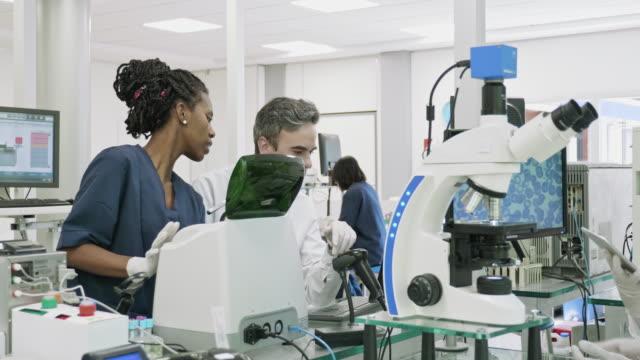 vídeos de stock, filmes e b-roll de patologistas e técnicos em ação no laboratório clínico argentino - equipamento médico