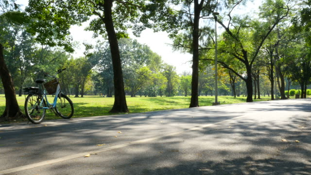 Pathway and Bicycle in Green Park at Morning video