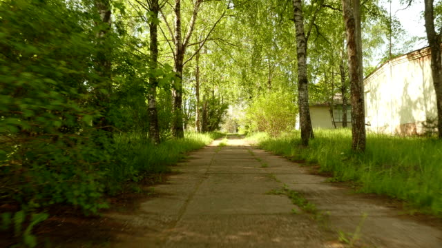 Pathway in the park. Smooth and slow steady cam shot. Clean and bright daytime. video
