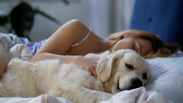 女性オーナーの覚醒を待つ患者犬 - イヌ科点の映像素材/bロール