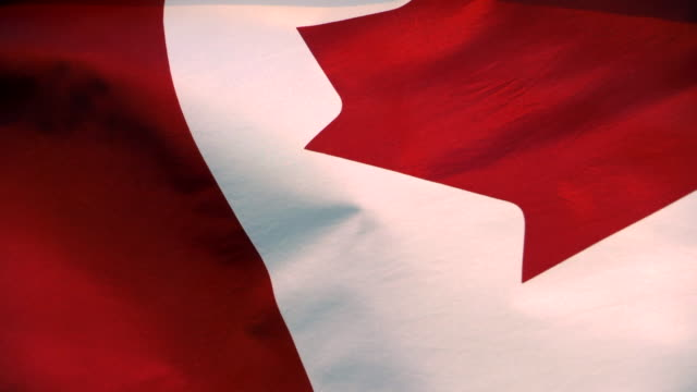 Patriotic Canada Flag Symbol, Red and White Slow Motion Wave, Canadian Flag video