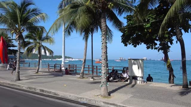 pattaya, kör längs strandpromenaden, palmer, hav, människor. - kungen av thailand bildbanksvideor och videomaterial från bakom kulisserna
