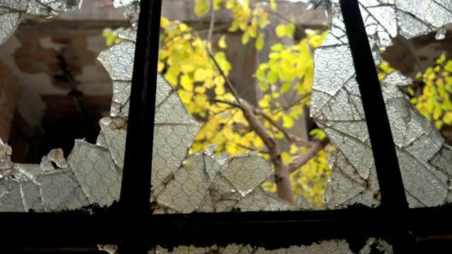 närbild: mönster av ett krossat glas på krossade fönster i övergivet hus - trasig bildbanksvideor och videomaterial från bakom kulisserna