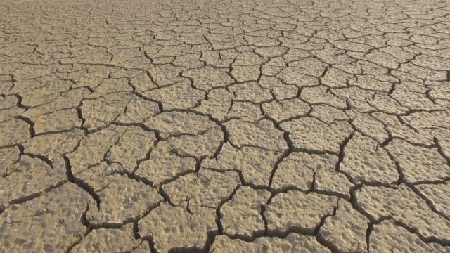 干ばつの間に泥のひび割れのパターン - 乾燥点の映像素材/bロール