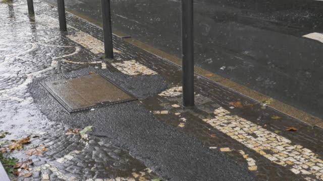 Paved Sidewalk and Bollards in Rainfall