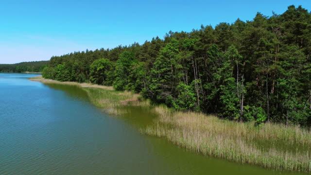 vidéos et rushes de paysage paisible. lac entouré par des arbres - lac reflection lake