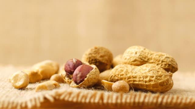 Peanut rotates on the turntable video