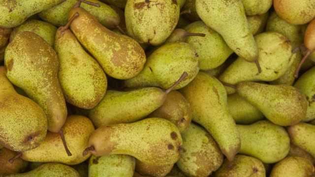 Pear storage Pear texture: lots of pears collected in a bins at the time of their collection at the production stage. Pear storage. pear stock videos & royalty-free footage