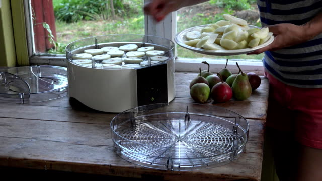 peasant girl hands put pieces of cut pears in fruit dryer machine dish. FullHD video