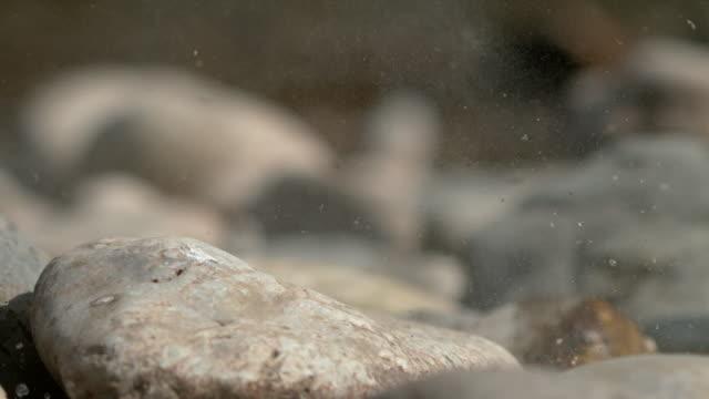 macro, dof: kieselteile zerbrechen in stücke, nachdem er auf das felsige flussufer gefallen ist. - fels stock-videos und b-roll-filmmaterial