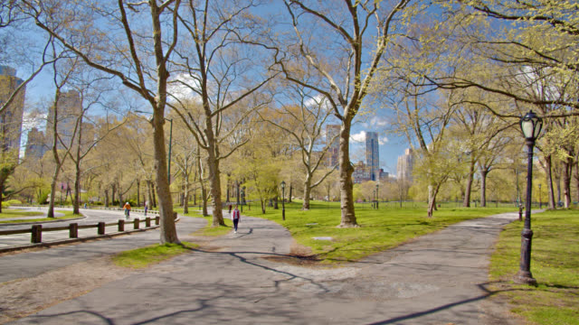Pedestrian at Empty Central Park New York. New York city cityscape central park manhattan stock videos & royalty-free footage