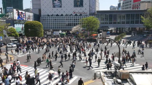 渋谷の交差点、横断歩行者の群衆 - 交差点点の映像素材/bロール