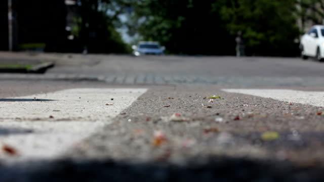 pedestrian crossing on a green light video