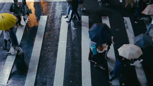 vídeos de stock e filmes b-roll de taipei taiwan  - pedestrian people cross a road in rainy day - guarda chuva