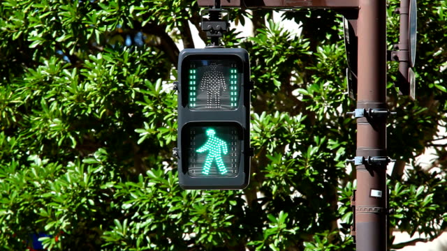 歩行者天国の光 - 交通信号機点の映像素材/bロール