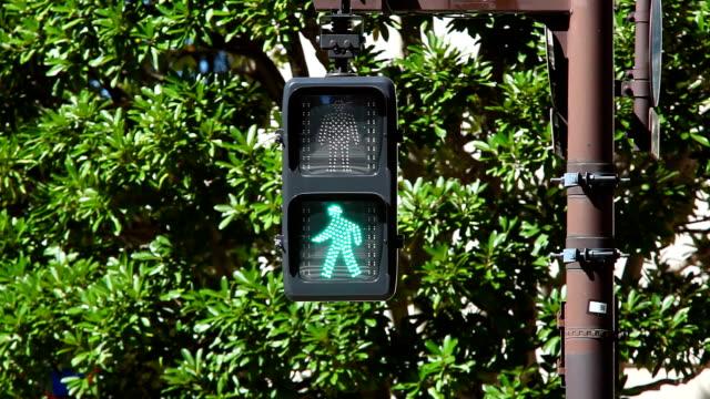 Pedestrian walk light-bus crosses video