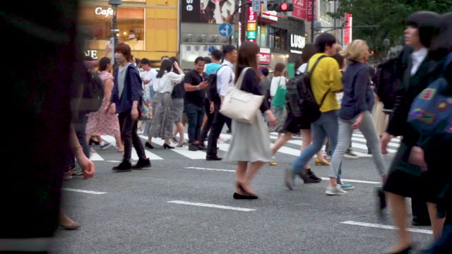 pedestrians cross at shibuya crossing in tokyo , japan - пешеход стоковые видео и кадры b-roll