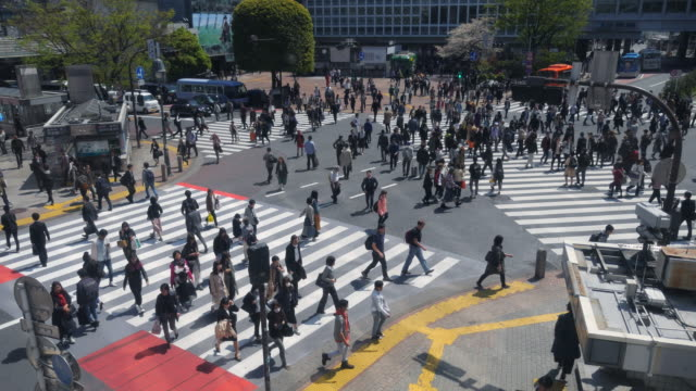 在東京澀谷十字路口的行人穿過馬路 - 澀谷交叉點 個影片檔及 b 捲影像