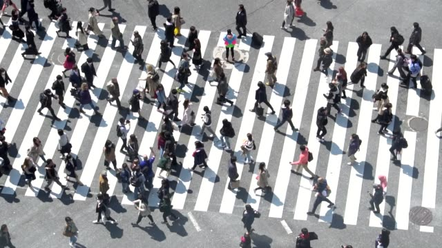 stockvideo's en b-roll-footage met voetgangers oversteken shibuya dagtijd - slow motion - dwarsweg