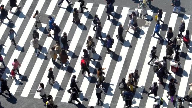 stockvideo's en b-roll-footage met voetgangers oversteken shibuya dagtijd - slow motion - oversteekplaats