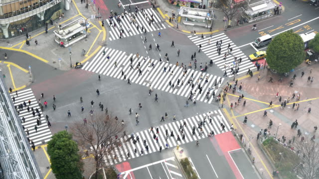 Pedestrians crossing street at Shibuya intersection Aerial View video