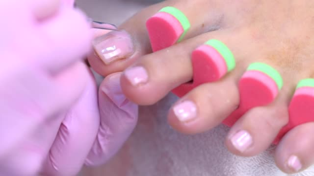 Pedicurist master is covering painting client's toes nails shellac, closeup. video
