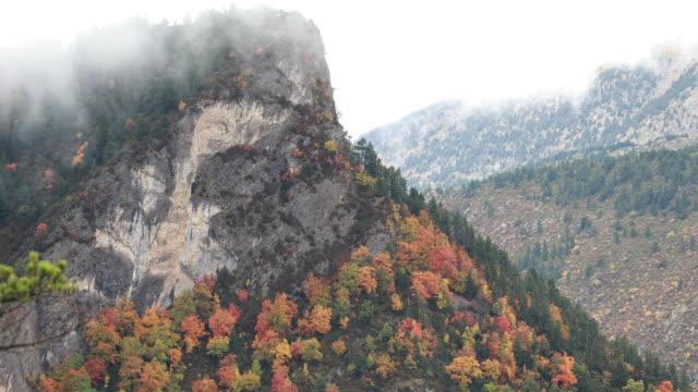 pedraforca herbst; gebirge cada - oktober in katalonien - kiefernwäldchen stock-videos und b-roll-filmmaterial
