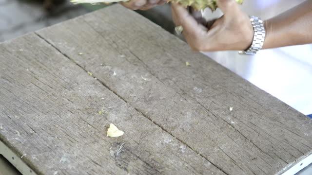 剥いたドリアン - ローフード点の映像素材/bロール