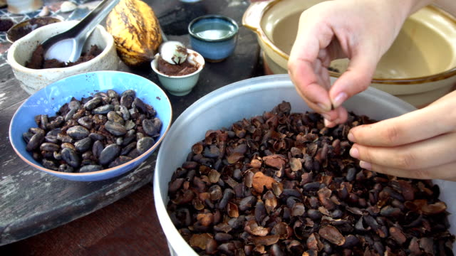 Peeling Cocoa Beans with Hands video