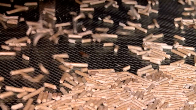 pellet production at the timber processing enterprise pellet production at the timber processing enterprise biomass renewable energy source stock videos & royalty-free footage