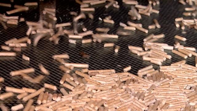 pellet production at the timber processing enterprise - биомасса возобновляемая энергия стоковые видео и кадры b-roll