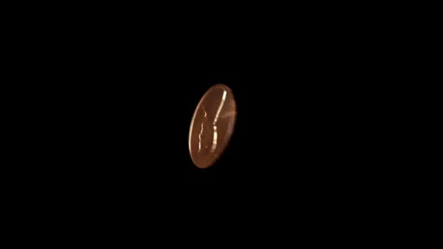 vídeos de stock, filmes e b-roll de penny coleta bounce - arméria
