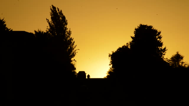 People coming down the hill at sunset Two boys coming down the hill with the sun hiding between houses and trees at sunset housing logo stock videos & royalty-free footage