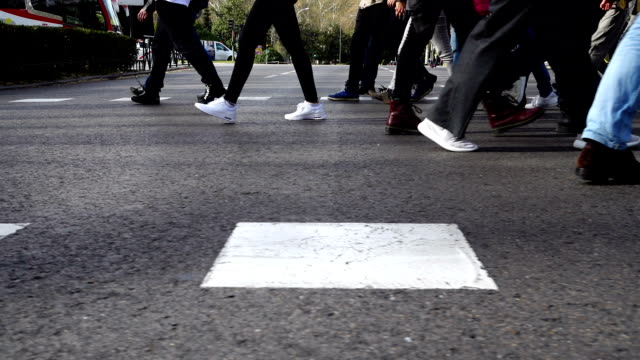 people cross the road on the crosswalk. slow motion. - pedone ruolo dell'uomo video stock e b–roll