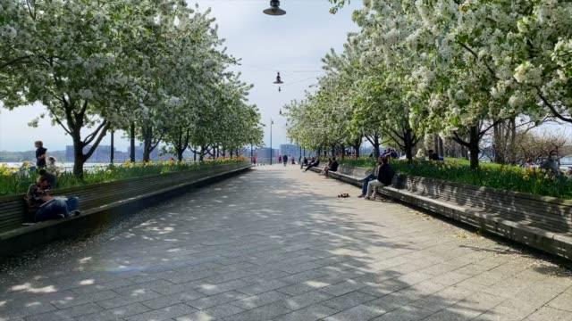 뉴욕시에서 야외에서 아름다운 하루를 즐기는 사람들 - 도시 거리 스톡 비디오 및 b-롤 화면