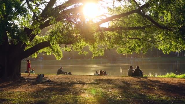 vídeos de stock e filmes b-roll de people enjoying a sunny day at ibirapuera park - parque público