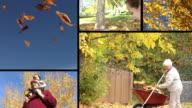 istock People enjoying the fall season, video montage 114144086