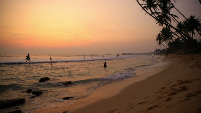 MS People fishing in ocean at sunset,Sri Lanka