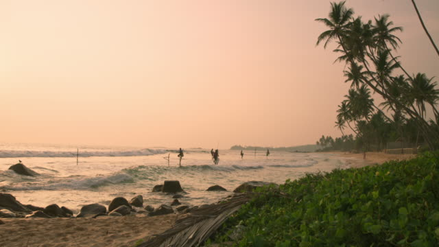 vídeos de stock e filmes b-roll de ms people fishing on posts over ocean at sunset,sri lanka - sri lanka