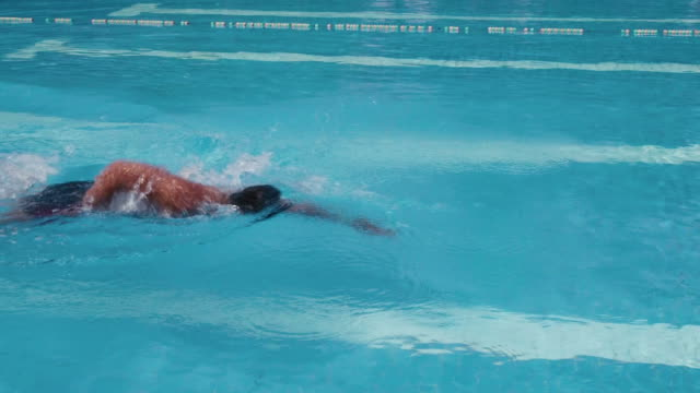 People, man in swimming pool, swimmer practicing, water sports video