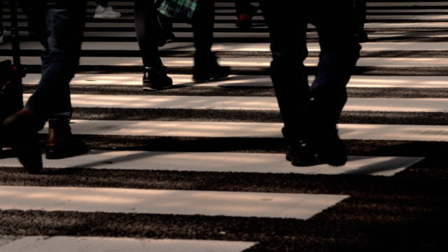 people on the road crosswalk in tokyo japan , slow motion - pedone ruolo dell'uomo video stock e b–roll