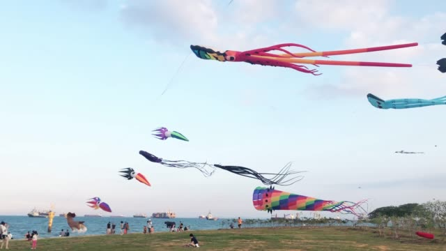 people play kite on the open field on weekend