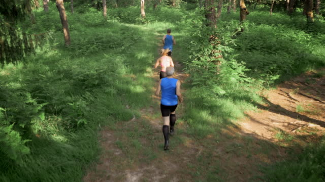 AERIAL People running in the forest video