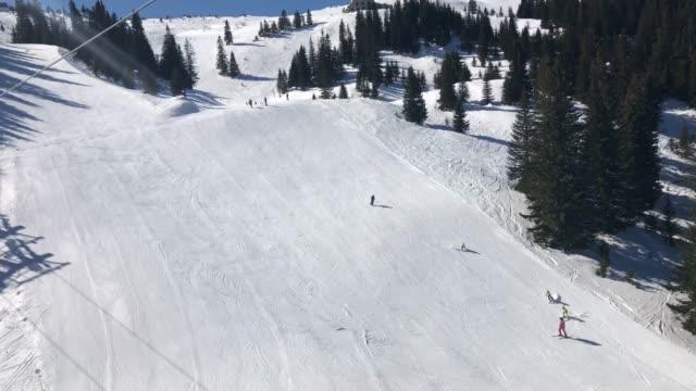 menschen beim skifahren im pinienwald auf präparierter piste am sonnigen wintertag mit klarem blauen himmel - kieferngewächse stock-videos und b-roll-filmmaterial