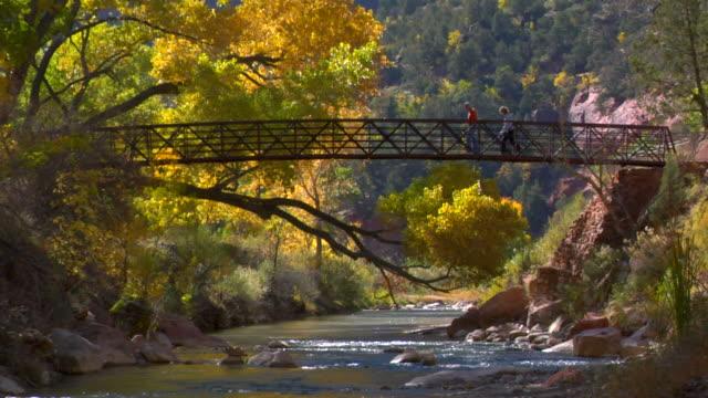 People walking across a bridge in Zion National Park  utah stock videos & royalty-free footage