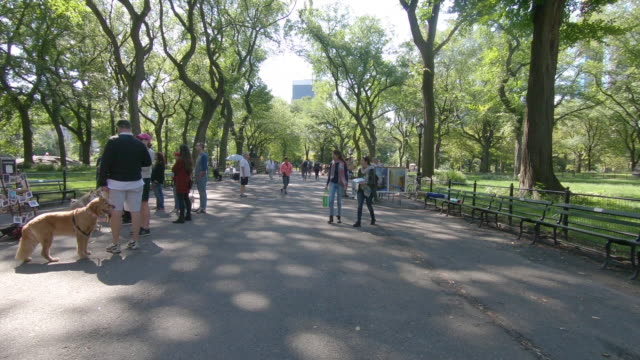 People walking and shopping with street artists and vendors and enjoying Central Park in New York City, Manhattan, New York People walking and shopping with street artists and vendors and enjoying Central Park in New York City, Manhattan, New York central park manhattan stock videos & royalty-free footage