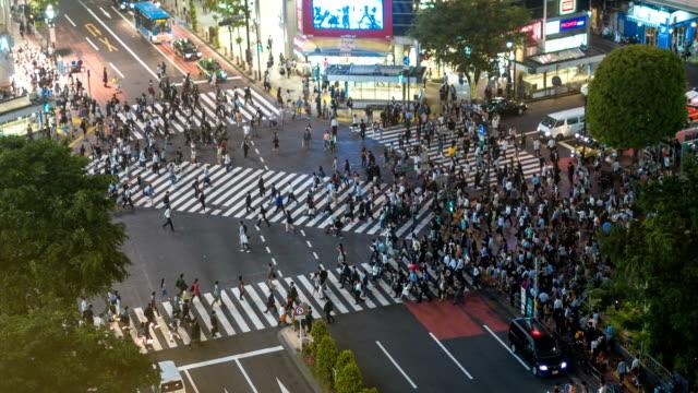 晚上在涉谷十字路口散步的人 - 澀谷交叉點 個影片檔及 b 捲影像