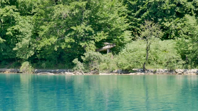 People walking in the paths of Kozjak Plitvice lake, National Park in Croatia video