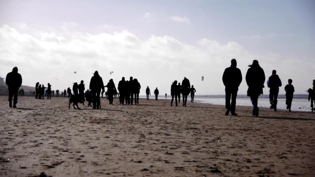 People walking on the beach video