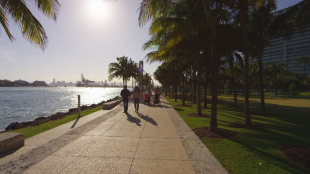 människor som går på vattnet i miami - strandnära bildbanksvideor och videomaterial från bakom kulisserna